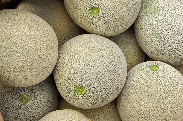 Close -up of Cantaloupes に配送:スマホ壁紙(壁紙.com)