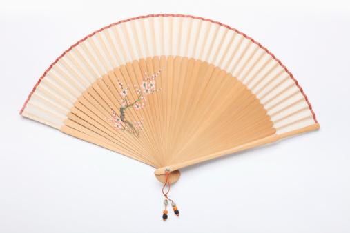 Ancient Civilization「Close-up of a fan」:スマホ壁紙(1)