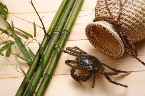 這う「Close-up of crabs」:スマホ壁紙(15)