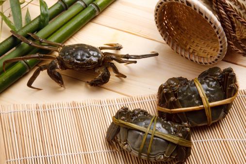 這う「Close-up of crabs」:スマホ壁紙(14)