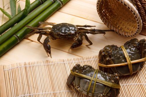 這う「Close-up of crabs」:スマホ壁紙(13)