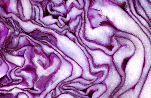Red Cabbage「Close-up of cabbage」:スマホ壁紙(0)