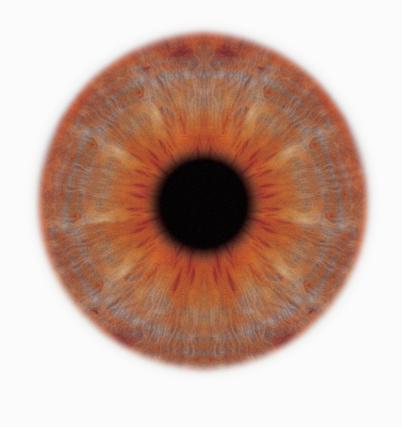 Iris - Eye「close-up of the iris of an eye」:スマホ壁紙(11)