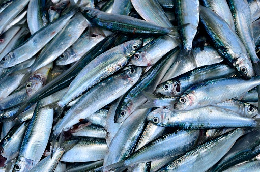 写真「Close-up of fish at a market」:スマホ壁紙(4)