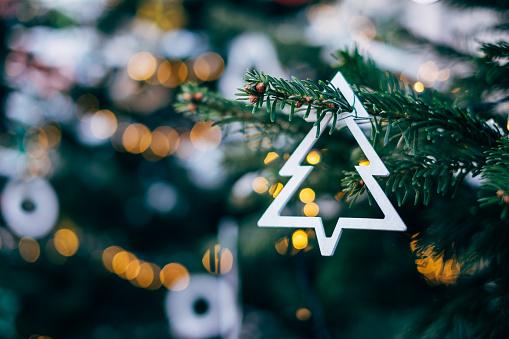マツ科「Close-up of a decoration on a Christmas tree」:スマホ壁紙(13)