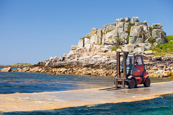 Seasoning「Tresco, one of the Scilly Isles, off South West Cornwall, UK, renowned for its tropical plants which are able to grow due to the Gulf Stream, or North Atlantic Drift. This is a warm ocean current which keeps the island warmer than they would otherwise be」:写真・画像(3)[壁紙.com]