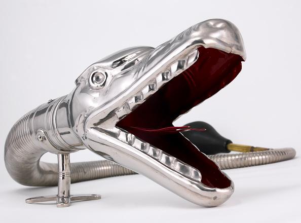 楽器「Boa Horn」:写真・画像(5)[壁紙.com]