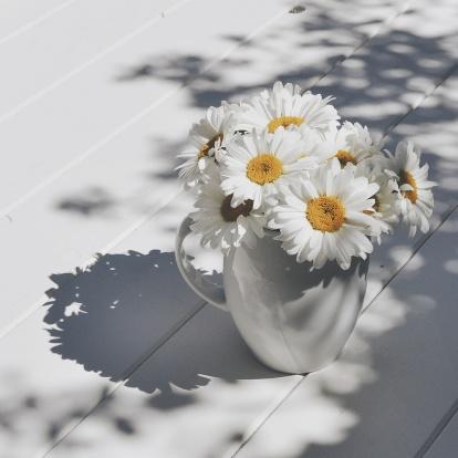 花「Jug of giant daisy flowers on wooden table in sunlight」:スマホ壁紙(18)
