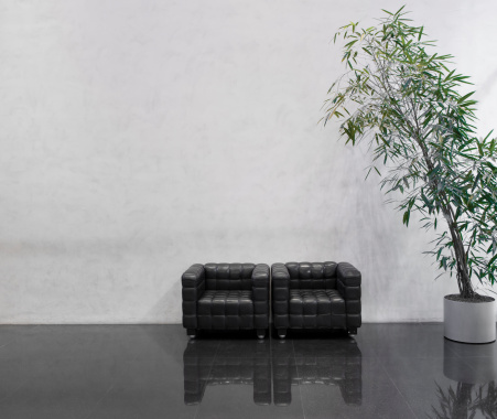 Clean「Wating area with two black chairs and a plant」:スマホ壁紙(13)