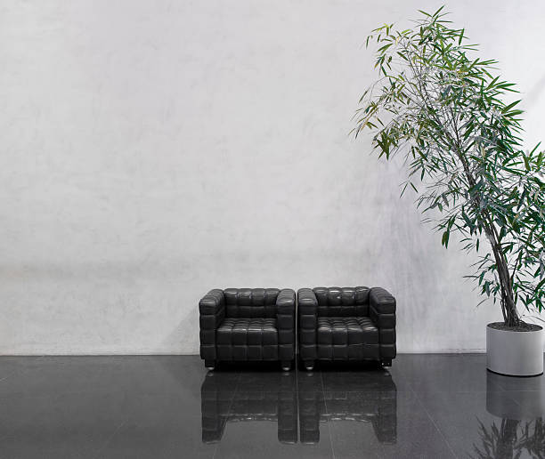 Wating area with two black chairs and a plant:スマホ壁紙(壁紙.com)