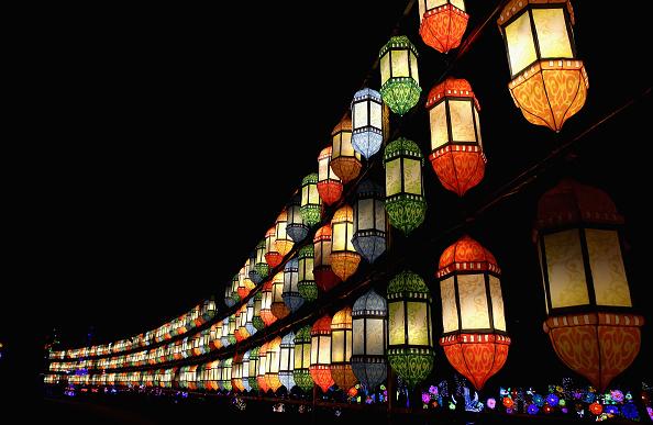 Francois Nel「Dubai Garden Glow」:写真・画像(10)[壁紙.com]