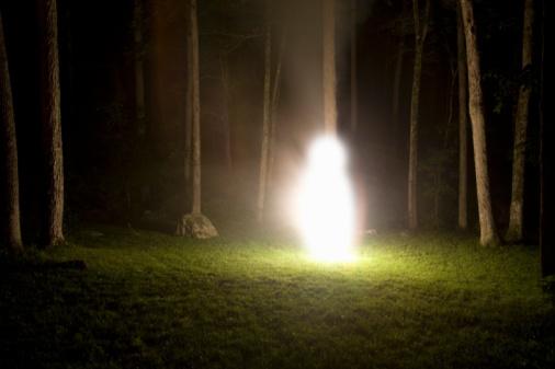 Single Tree「glowing figure in the woods」:スマホ壁紙(19)