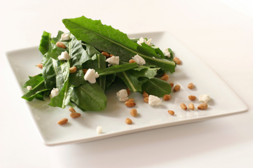 Pine Nut「Dandelion Salad」:スマホ壁紙(18)