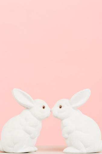 Rabbit - Animal「Rabbits」:スマホ壁紙(16)