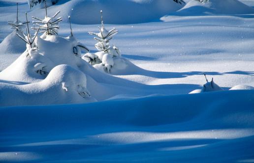 Superb view「Snowy landscape」:スマホ壁紙(4)