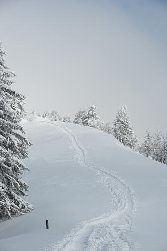 グルノーブル「Snowy landscape with ski tracks」:スマホ壁紙(16)