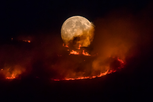 Fire - Natural Phenomenon「Summer Weather Sparks Wildfire On Saddleworth Moor」:写真・画像(16)[壁紙.com]