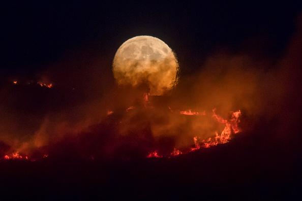 Bestpix「Summer Weather Sparks Wildfire On Saddleworth Moor」:写真・画像(12)[壁紙.com]