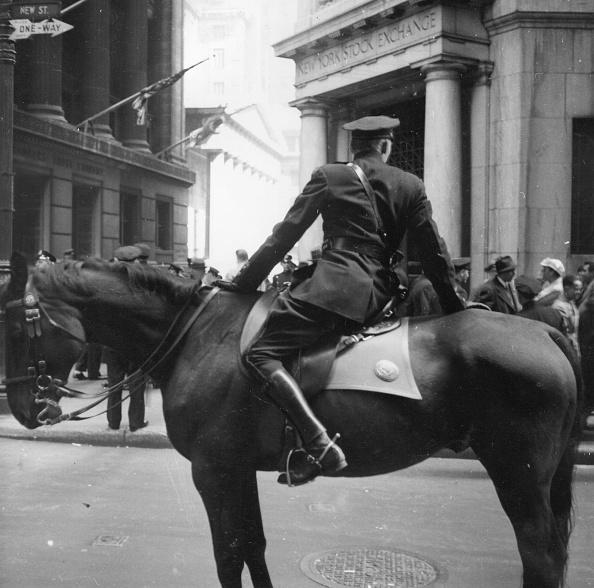 Horseback Riding「Mounted Cop」:写真・画像(14)[壁紙.com]