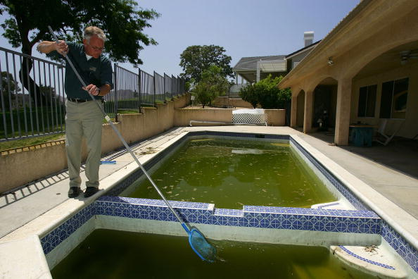 Blank「West Nile Virus Mosquitoes Return Early To California」:写真・画像(11)[壁紙.com]