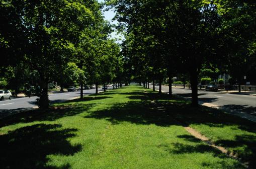 Boulevard「Monument Boulevard」:スマホ壁紙(18)