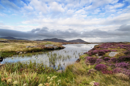 Outer Hebrides「Landscape shot of moorland near Daliburgh, South Uist」:スマホ壁紙(0)