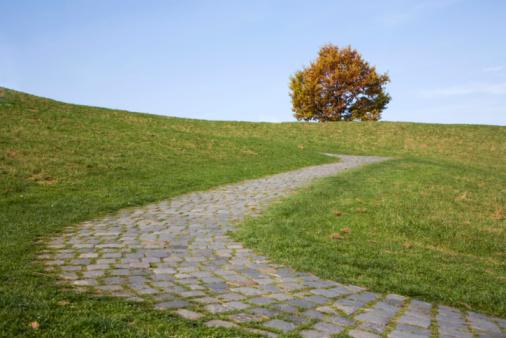 Footpath「cobbledstone path s-curve and autumn tree」:スマホ壁紙(10)