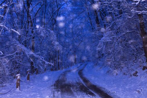 雪「夜の雪」:スマホ壁紙(10)