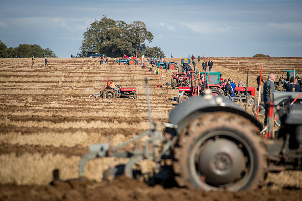 Agriculture「Mendip Ploughing Society Celebrates 160 Years」:写真・画像(12)[壁紙.com]