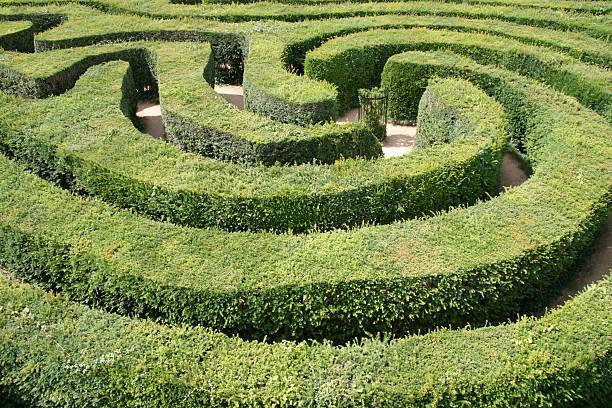Hedge Maze Two:スマホ壁紙(壁紙.com)