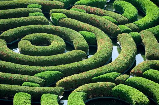 Lost「Hedge Maze」:スマホ壁紙(19)