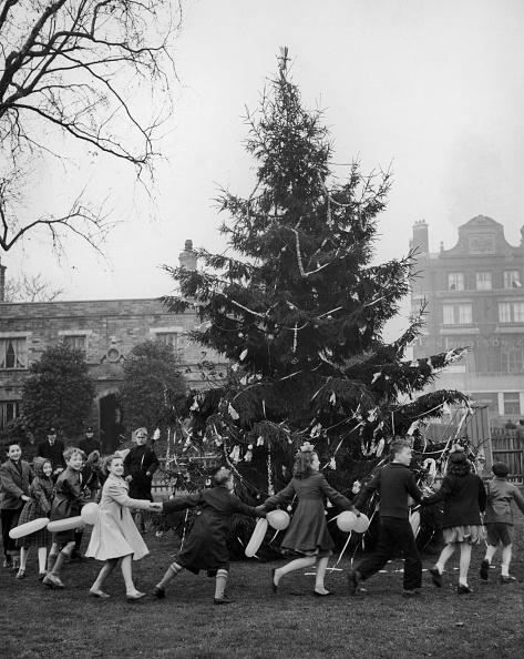 Fred Morley「Dancing Round The Tree」:写真・画像(2)[壁紙.com]