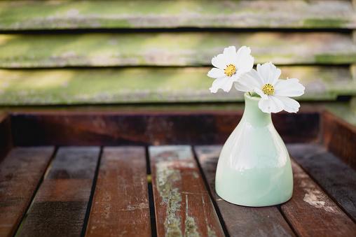 コスモス「Flower vase with two white blossoms of Cosmea, Cosmos Bipinnatus, on wooden tray」:スマホ壁紙(11)