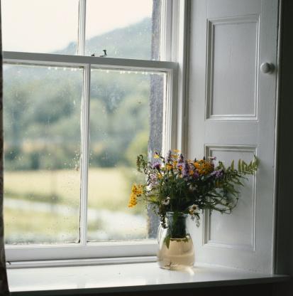 花「Flower vase on window」:スマホ壁紙(19)
