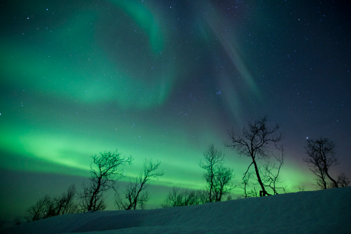 Aurora Polaris「Northern Lights in the arctic wilderness, Nordland, Norway.」:スマホ壁紙(12)