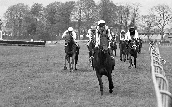 Wooden Post「The Derrinstown Stud Derby Trial Stakes 1986」:写真・画像(13)[壁紙.com]