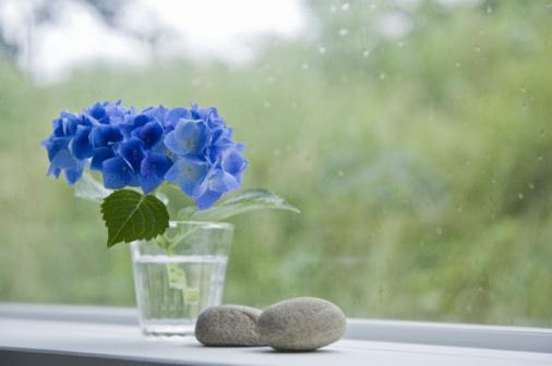 あじさい「Hydrangea and stone near the window」:スマホ壁紙(16)