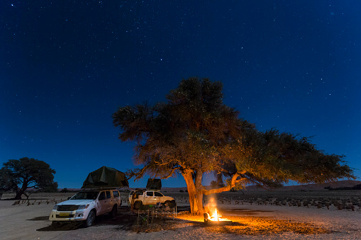 Single Tree「Namibia, Namib Desert, Namib Naukluft National Park, camping with camp fire by night」:スマホ壁紙(4)