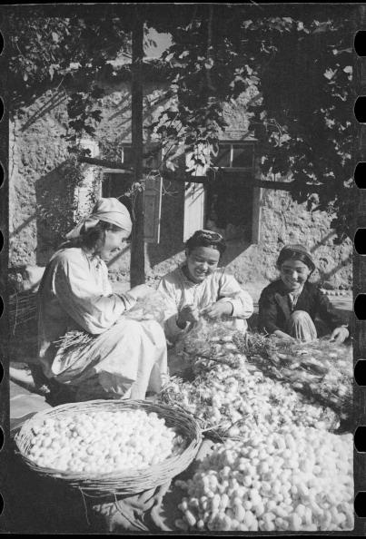 Uzbekistan「At Work」:写真・画像(7)[壁紙.com]