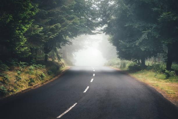 Road Into Unknown:スマホ壁紙(壁紙.com)