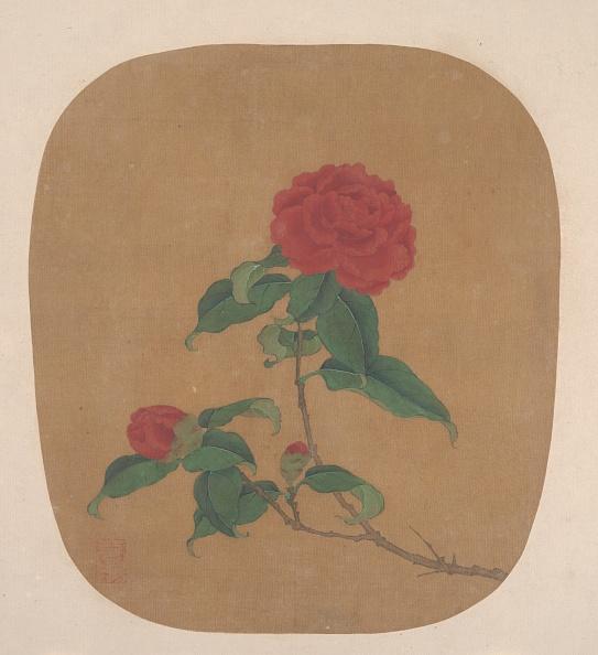 Circa 14th Century「Camellia Flowers. Creator: Unknown.」:写真・画像(6)[壁紙.com]