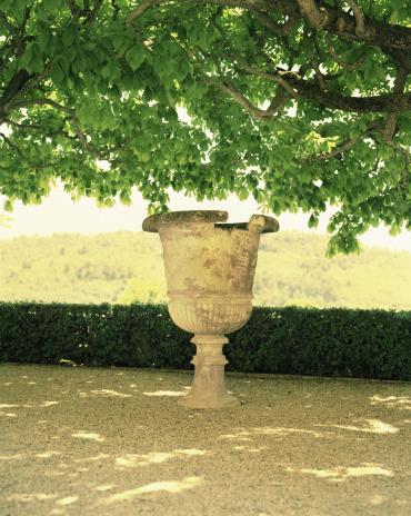 Formal Garden「Urn underneath tree」:スマホ壁紙(15)