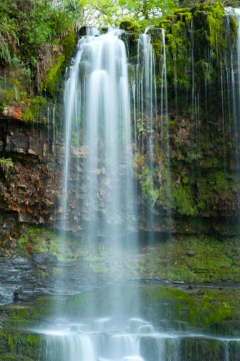 Amazon Rainforest「Tropical Waterfall, Amazon Rain forest」:スマホ壁紙(12)