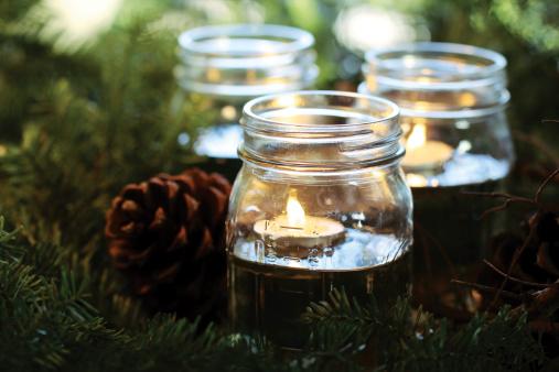 Pine Cone「Pine boughs glow」:スマホ壁紙(11)