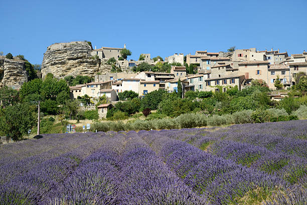 Saignon & Lavender Field Luberon Provence:スマホ壁紙(壁紙.com)