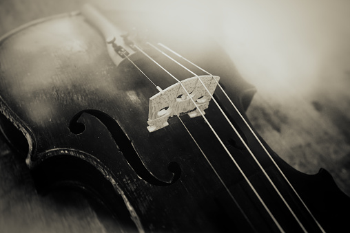Violin「the old violin」:スマホ壁紙(5)