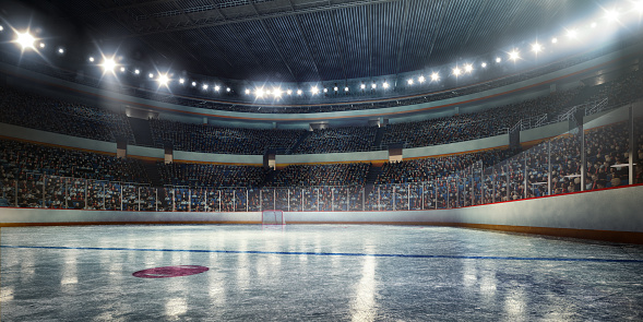 Panoramic「Hockey arena」:スマホ壁紙(15)