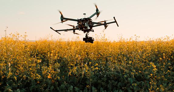 無人航空機「フィールド内の植物の上に低空飛行ドローン」:スマホ壁紙(11)