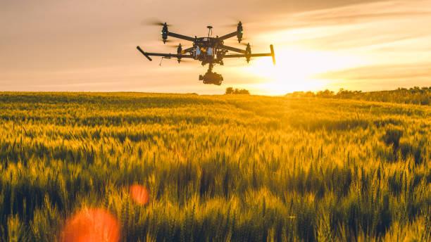 Drone flying over field at sunset:スマホ壁紙(壁紙.com)