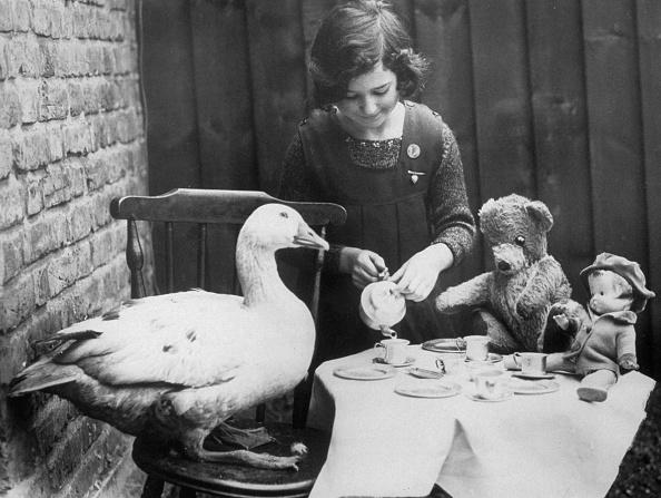 雁「Lucky Goose」:写真・画像(3)[壁紙.com]